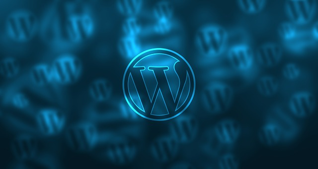 Logotipo de WordPress, optimización SEO y diseño web con WordPress